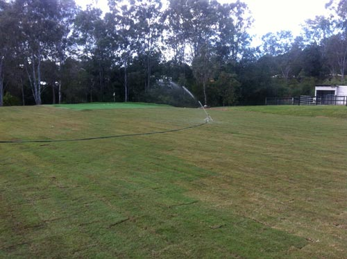 Finally! The sprinkler is working