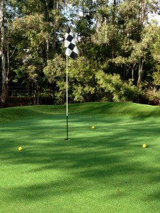 My amazing synthetic golf green